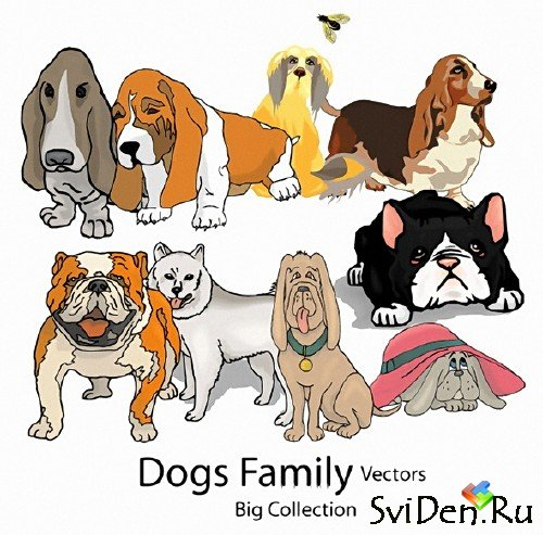 Dogs Family