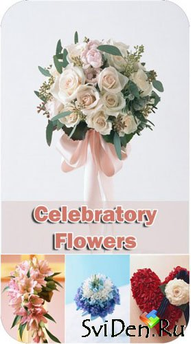 Stock Photos - Celebratory Flowers