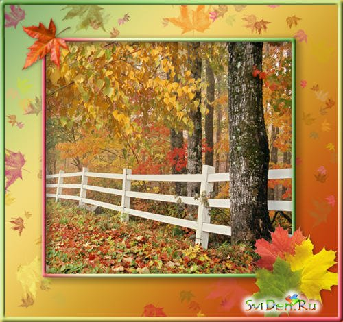 Template-Photoframe - The Autumn