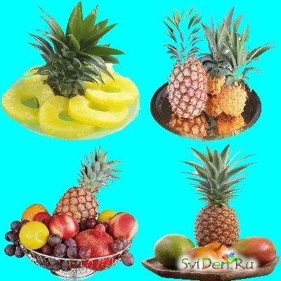 PNG Clipart - Pineapples