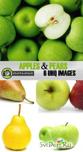 Clipart - Amazing SS - Apples and Pears