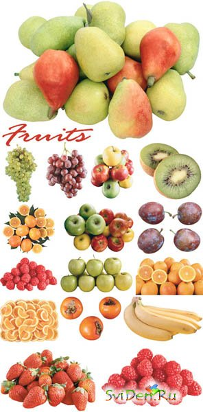 Clipart - Fruits