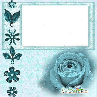 Photoframe - Blue Rose