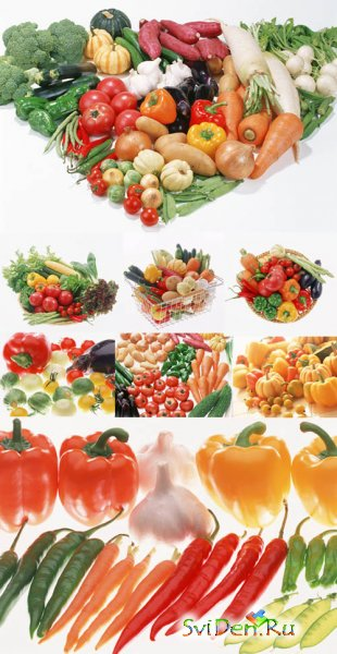 Clipart - Vegetables season