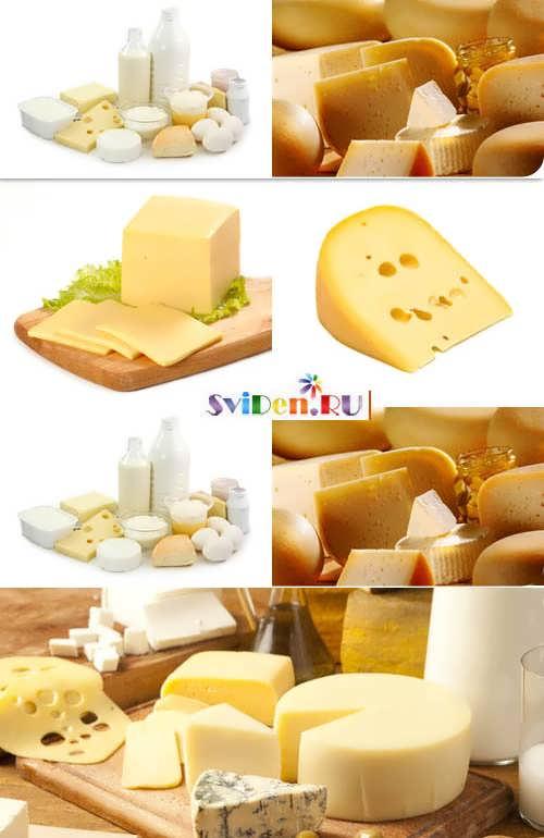 дизайны сыров фото