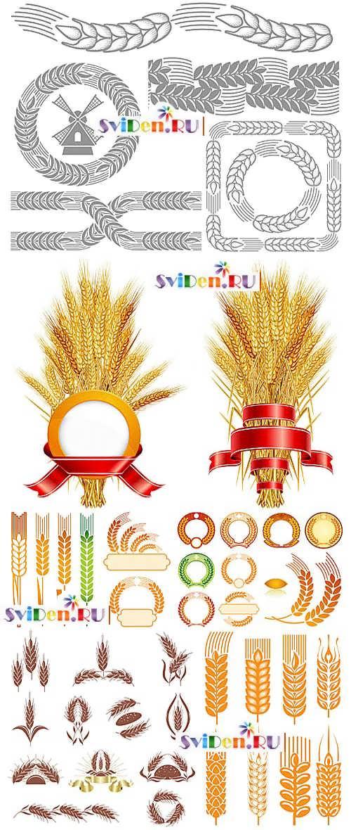 Пшеница нарисованная 2