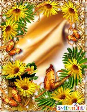Рамка фотошоп жёлтые маргаритки