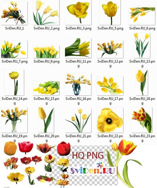 Цветок в букетах для украшения