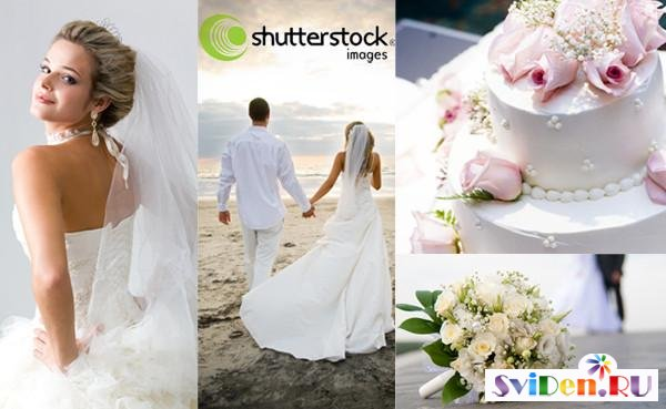 Shutterstock - Weddings, brides and wedding cakes