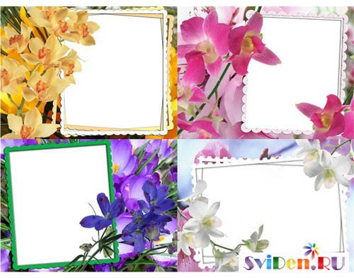 PhotoFrames for Photoshop