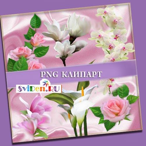 Клипарты фотошопа цветы невероятно