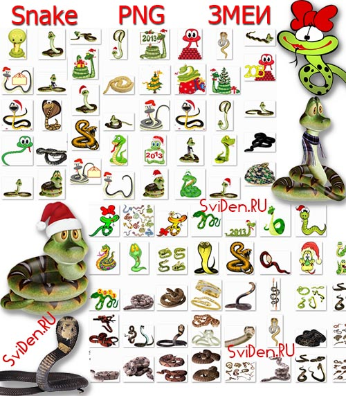 Змеи PNG клипарт | Snakes PNG clipart