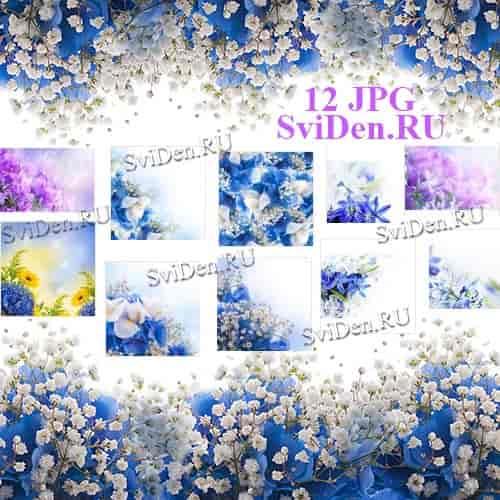 Цветы нежность весна - Растровый клипарт бесплатно